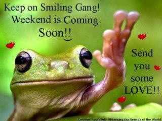 The weekend is coming ribbit ribbit pinterest for New kid movies coming out this weekend