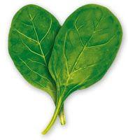 Muffin Tin Mania: Spinach Quinoa Cakes | Num' Edibles | Pinterest