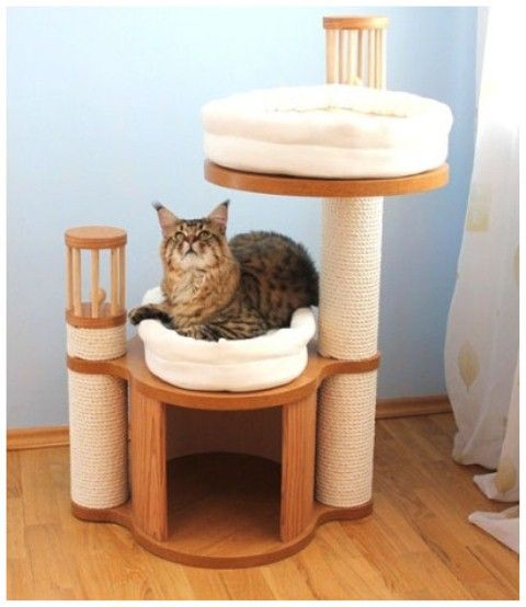10 diy cat bed ideas
