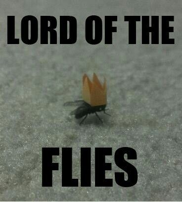 lord of the flies describe ralph