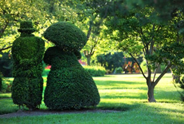 Pin By Bennett Mccardle On Topiary Great Plant Sculpture
