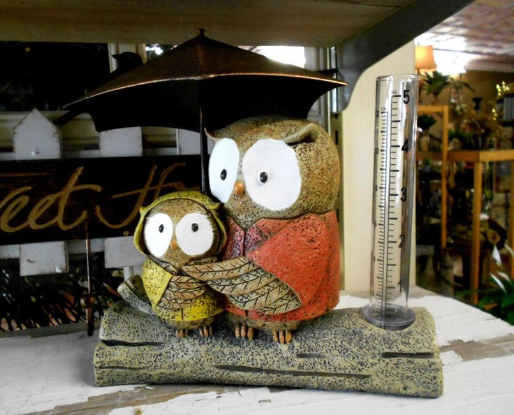 Cute Owls At Love Lace Home Decor Pinterest
