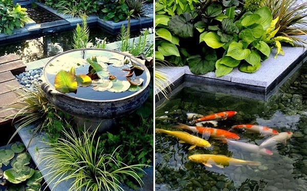 Beautiful garden and koi pond for Beautiful koi ponds
