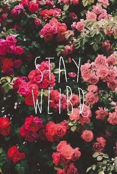 Stay weird my friendsStay Weird Tumblr