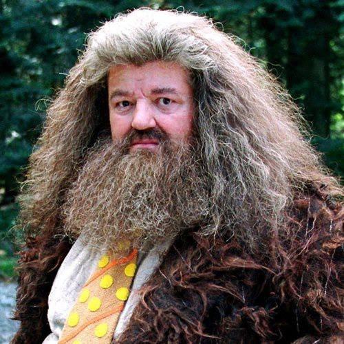 Hagrid, right before Buckbeak was sentenced to death