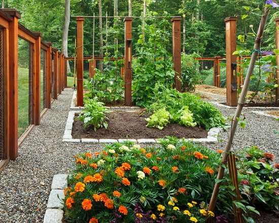 Backyard Vegetable Garden Fence White Picket Fence As A Border Of