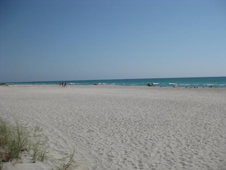 Venice beach venice florida usa nice beaches pinterest for Nice beaches in usa