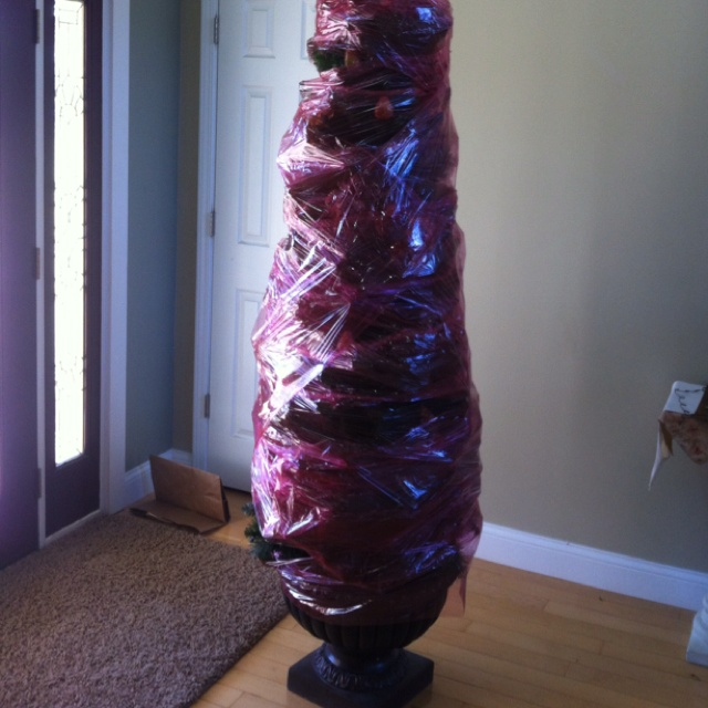 Wrap my christmas tree in saran wrap leaving all the decorations on
