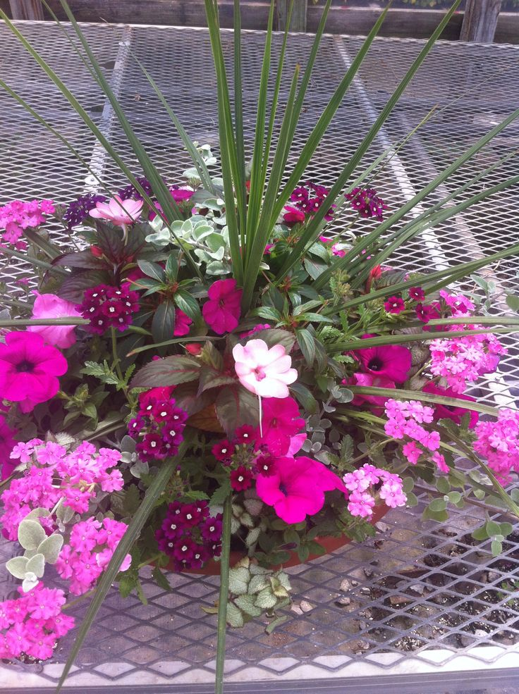 SpikesSpike Flower Arrangement
