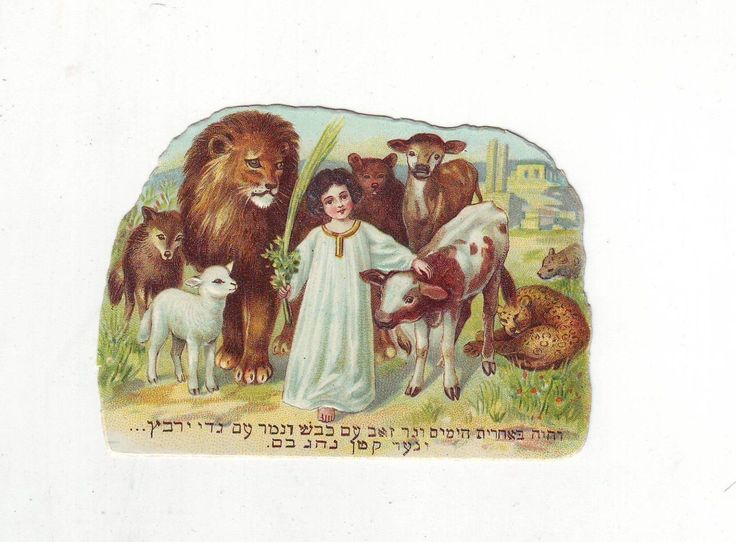 Judaica Die Cut Lion Lamb Leopard  Child Jewish | eBay