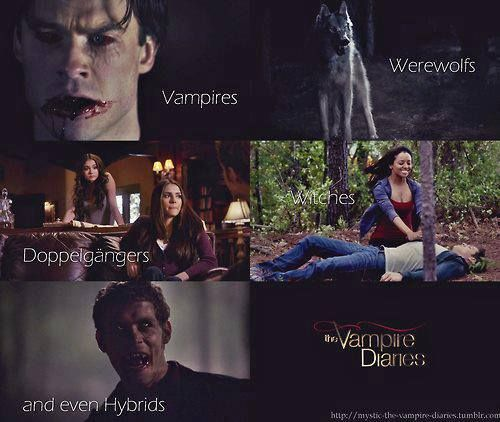 vampires werewolves doppelgangers witches and even hybrids