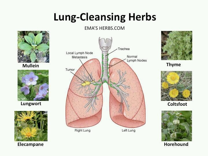 Alternative medicine for lung tumor removal
