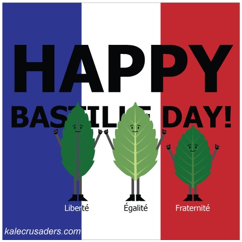 happy bastille day in french translation