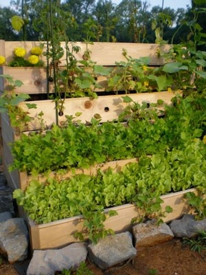 VERTICAL CONTAINER GARDEN BED New Gardening Ideas