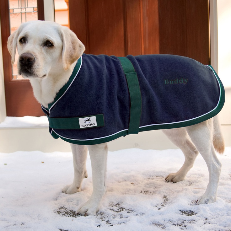 SmartPak Fleece Dog Coat - thinking of getting this as a liner for under Finn's waterproof jacket.