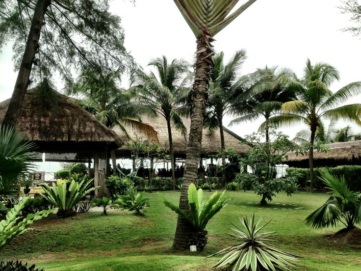 Restaurant by the seaside golden palm tree sepang goldcoast pint