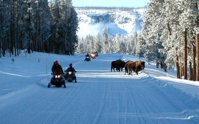 Snowmobiling in Yellowstone!