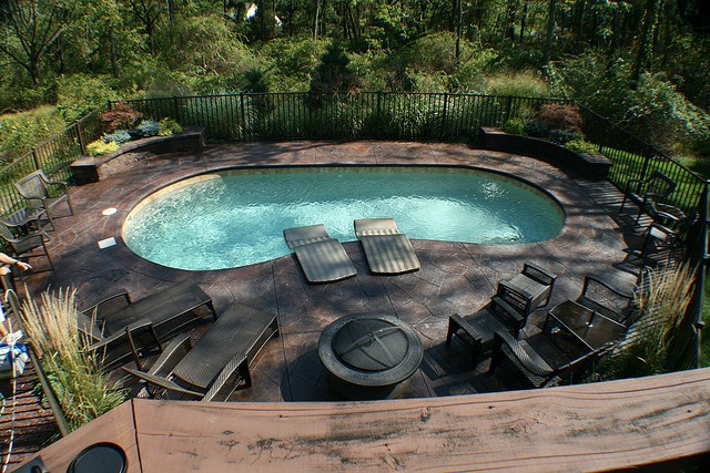 Landscaping ideas for the backyard for Pool design hamilton