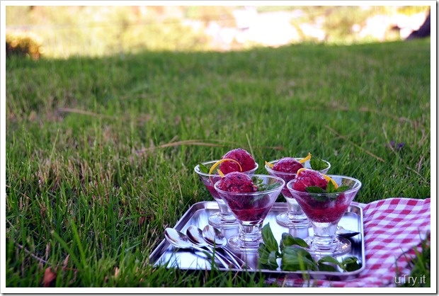 ... -Kiwi Sorbet with Meyer Lemon and Basil (no ice cream machine needed