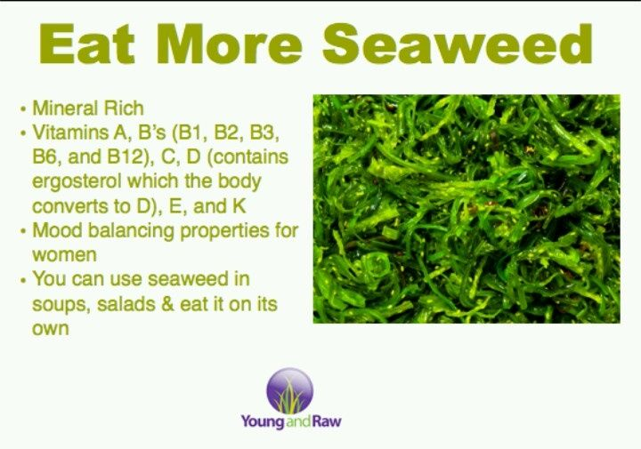 why do dogs eat seaweed