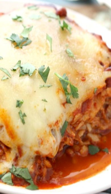 Pulled Pork Enchiladas with Red Chile Sauce ~ Tender pork is slowly ...