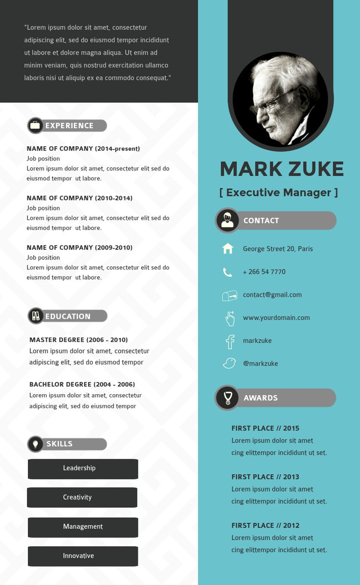 Infographic resume executive