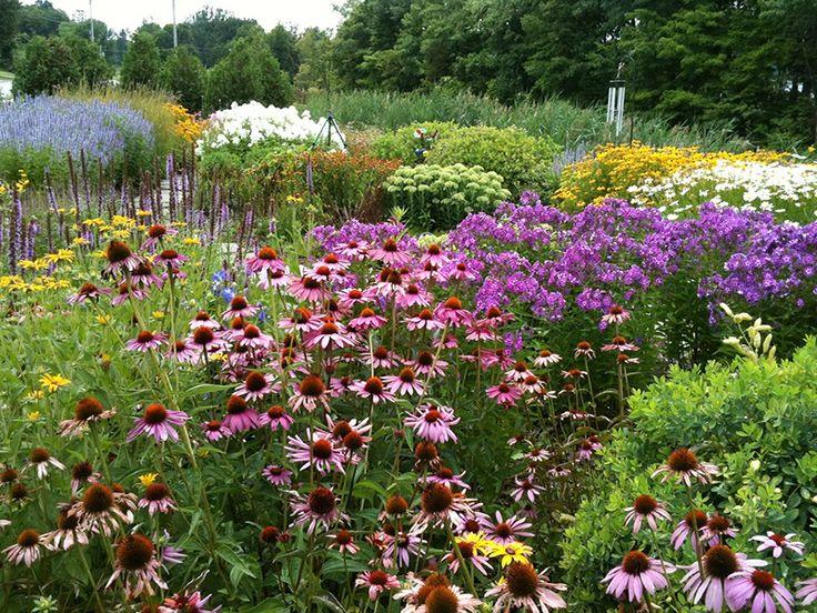 butterfly garden landscape design Gardening and flowers