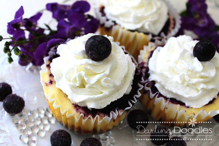 individual Mini Blueberry Cheesecakes!! | recipes. to do. want to. wi ...