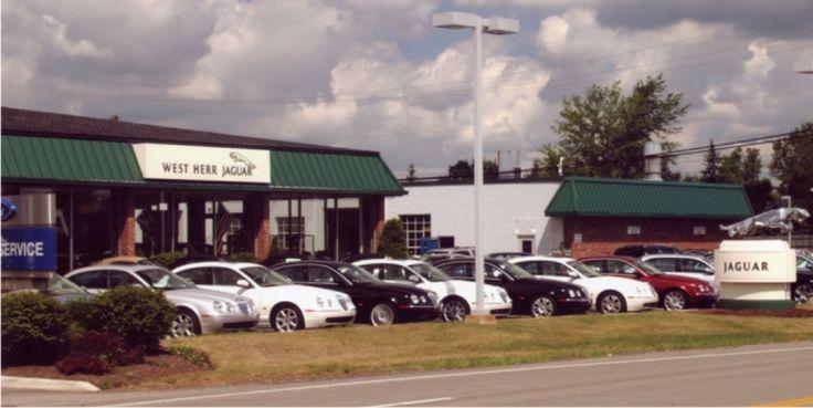 Jefferson Davis Car Dealerships