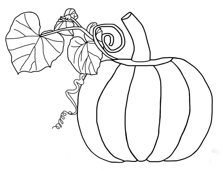 pumpkin and leaves coloring pages - photo#1