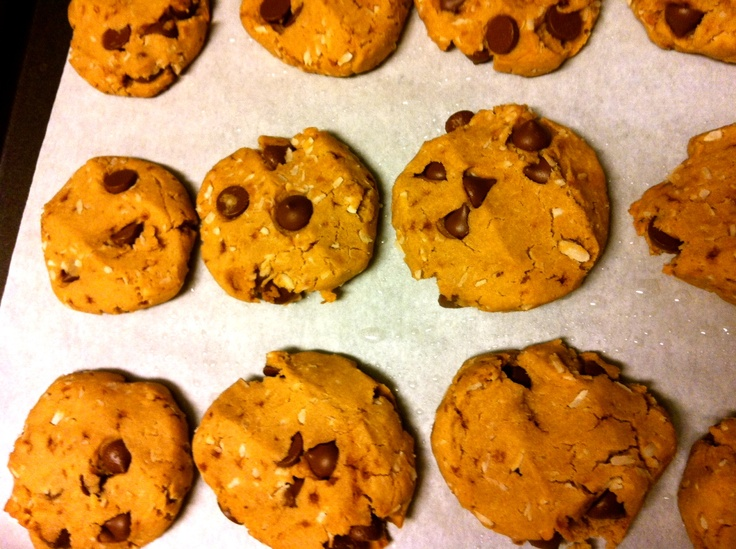 Gluten-free chewy chocolate chip cookies