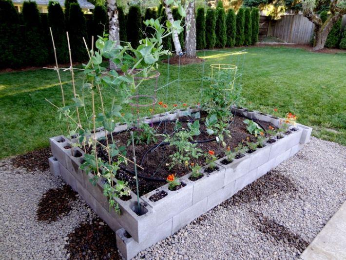 Raised Garden Bed W Cinder Blocks Bullock Household Pinterest