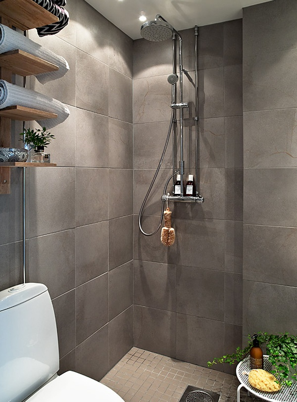 Open shower next to toilet bay house pinterest - Bathrooms for all tastes ...