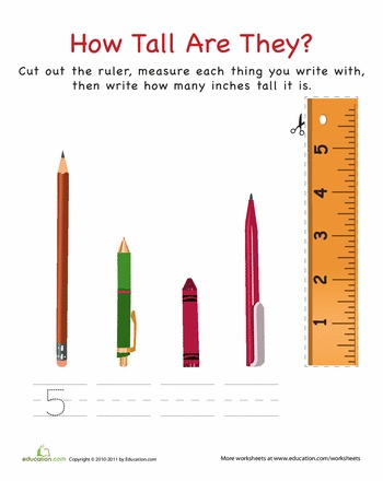 How Tall Are They: Writing Instruments