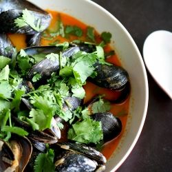 Thai Curry Mussels. A most slurp-able broth made with coconut milk ...