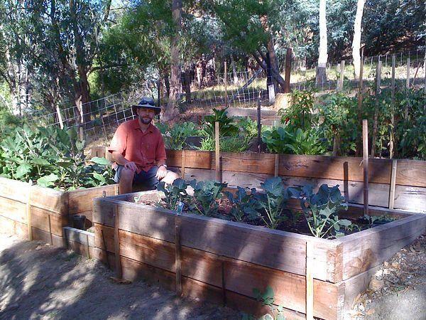 Terraced vegetable garden garden pinterest for Terrace vegetable garden