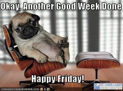 So Cute! Happy Friday :) | Funnies | Pinterest Cute Happy Friday Pictures