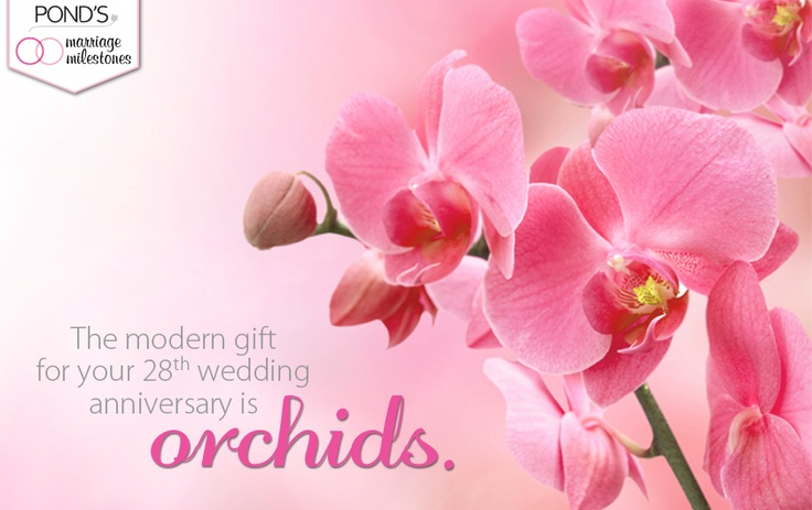 Gift Ideas 8th Wedding Anniversary : wonderful eighth wedding anniversary gift ideas 27 became efficient ...