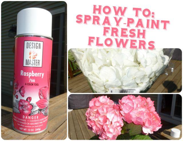 how to spray paint fresh flowers wedding diy hydrangea design master. Black Bedroom Furniture Sets. Home Design Ideas