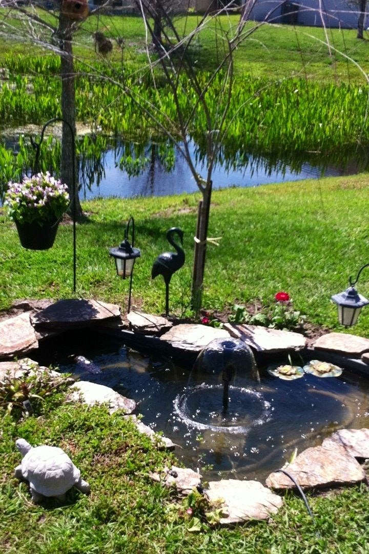 my pond in my backyard ponds and fountains pinterest