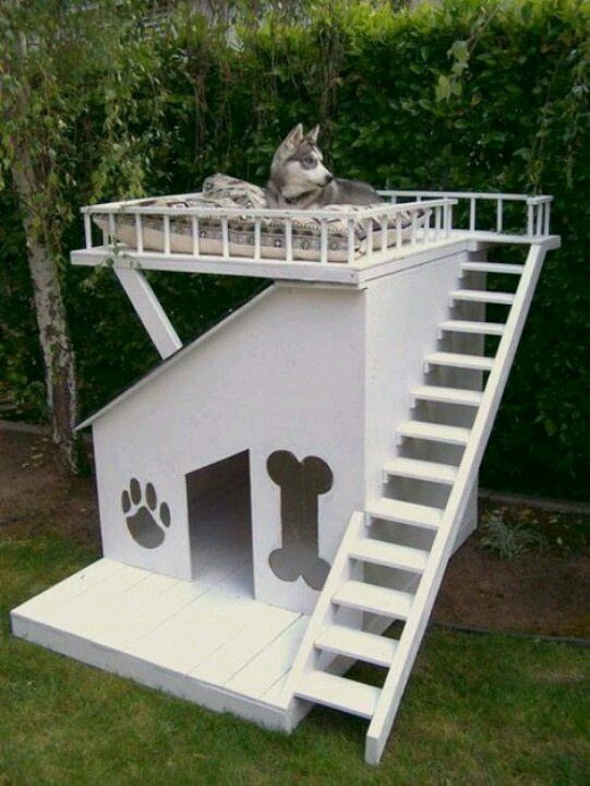 Cute dog house country living photos pinterest