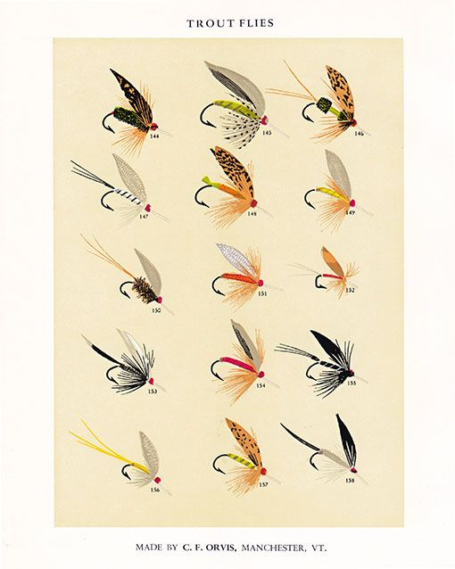 Trout flies prints textiles wallpaper pattern for Fly fishing posters