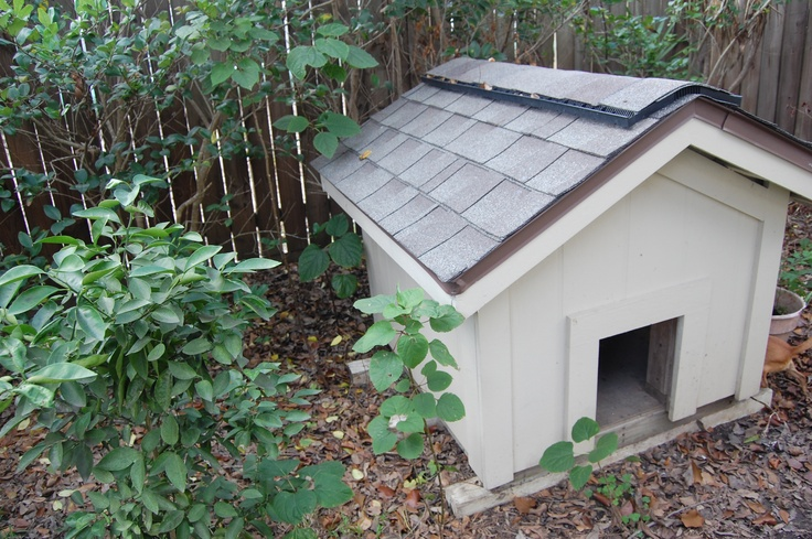 Dog House Me And My Dad Made From Scratch Great For Designing Your