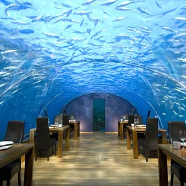 ithaa undersea restaurant places i d like to go destination dining ithaa undersea restaurant the maldives