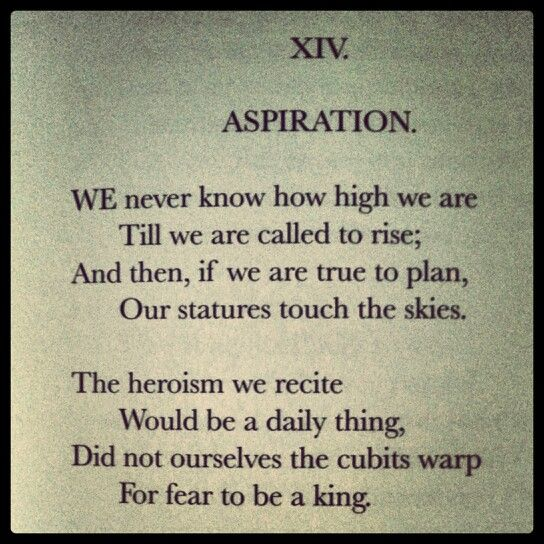 aspiration by emily dickinson poem il mio canto libero