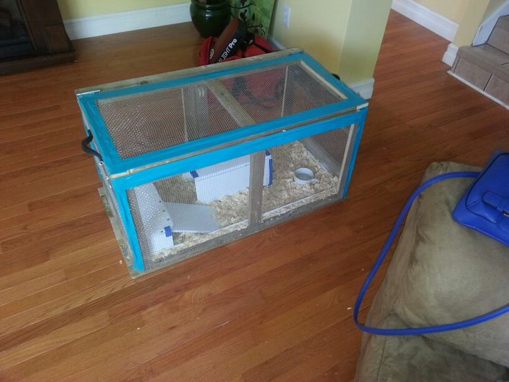 Outdoor guinea pig cage homemade guinea pig cages for Diy guinea pig hutch