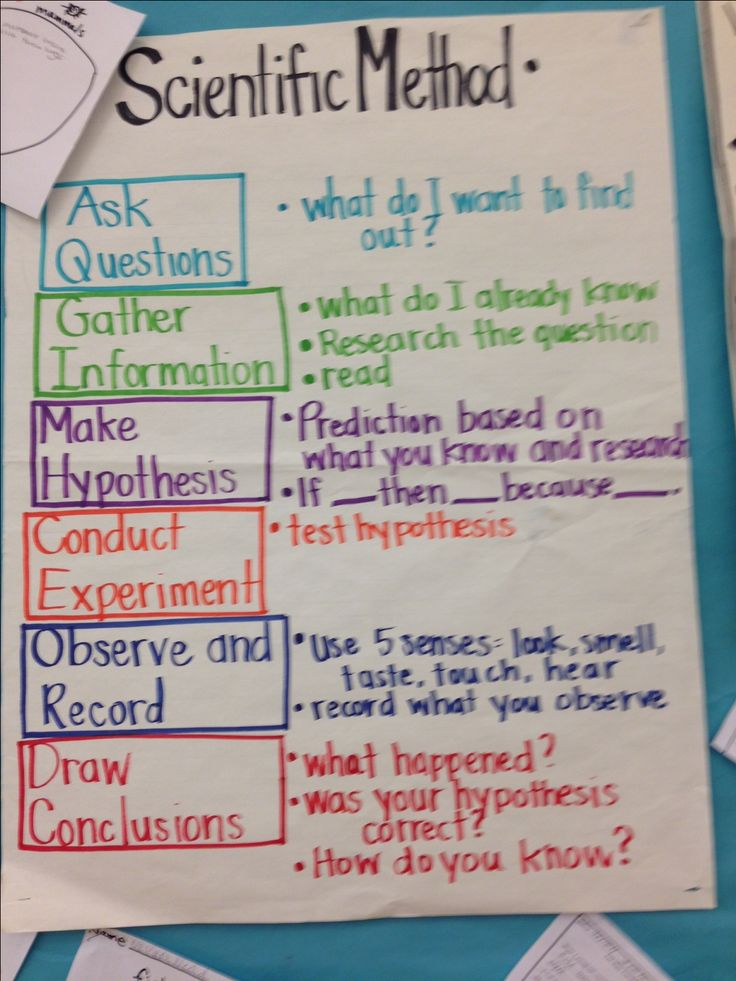 3rd Grade Writing Activity: The Five-Step Writing Process