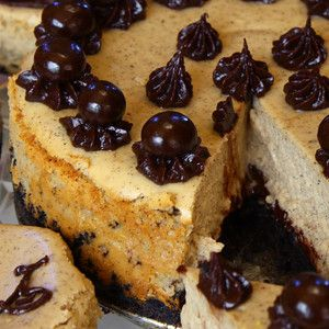 Cappuccino Fudge Cheesecake, really? So not fair to combine three of ...