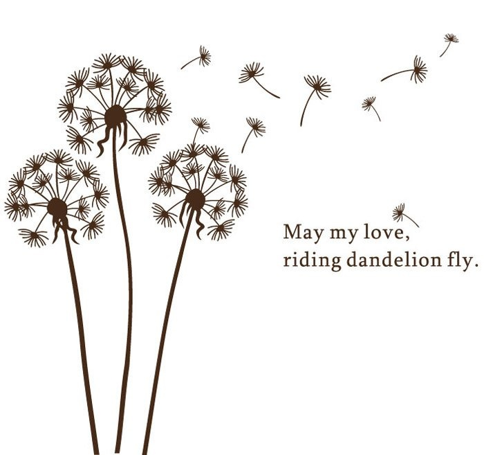Gallery For gt Dandelion Drawing