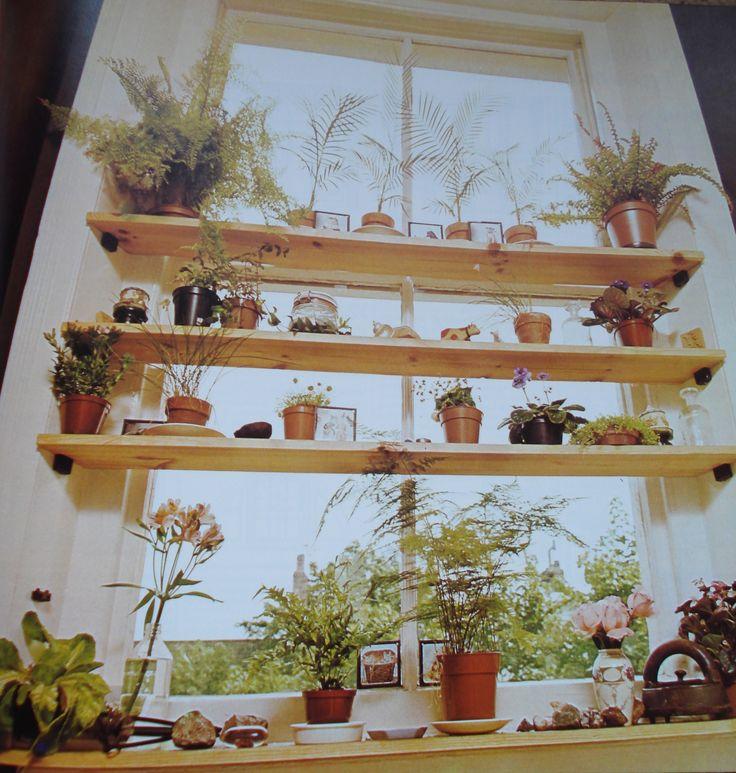 Plant Shelves In Window Indoor Gardening Pinterest